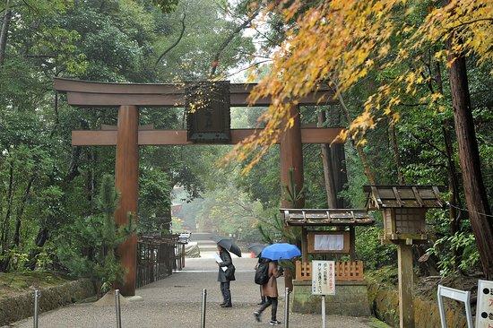 Isonokami Jingu: 参道の大鳥居