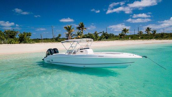Blue Pelican Boat Charter