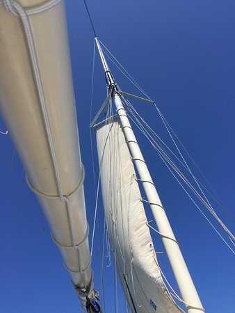 First Time on a Sailboat was AMAZING!!!