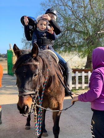 Escursione con i cavalli