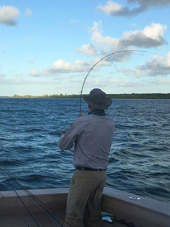 Bahamas : Got one!