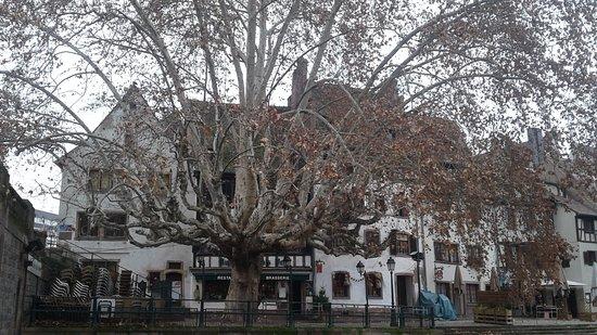 Restaurant Au Petit Bois Vert - Strasbourg - 03-Jan-2019