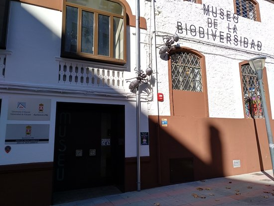 Exterior Museo