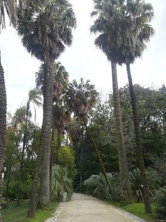 Jardim Botânico Da Universidade De Lisboa