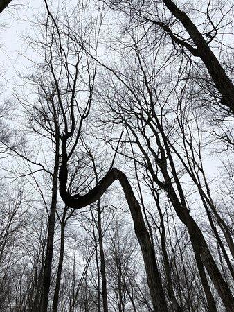 GeoTime Trail