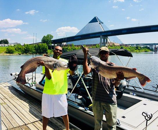 Fish Memphis