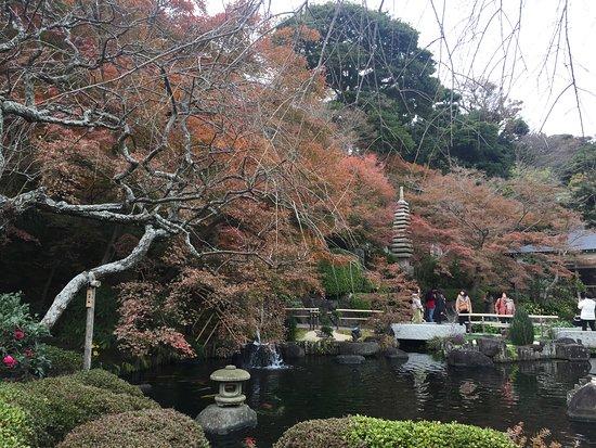 Hase-dera Temple: Love