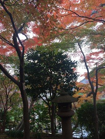 Hase-dera Temple: 3