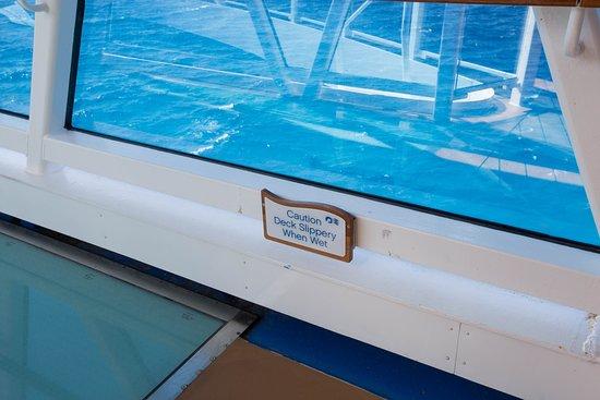 SeaWalk on Regal Princess