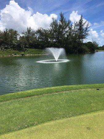 Trou d'eau Douce: J ai loué un scooter (location que je recommande )pour me rendre sur le golf de l île au cerfs coin paradisiaque