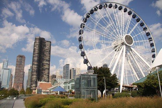 Chicago, IL : Ferris Wheel at Navy Pier