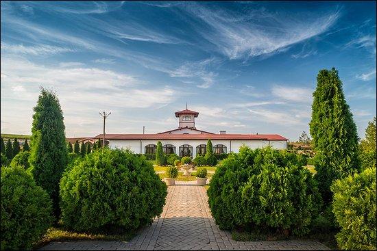 Moldavanskoye, Nga: В долине Лефкадия вы можете посетить не только увлекательные экскурсии, но и заглянуть в ресторанный комплекс, включающий ресторан «Амфора», винный бар «Ритон» и собственную пиццерию.