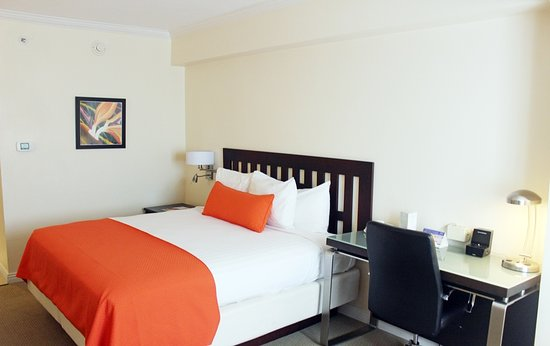 the jamaica pegasus hotel kingston updated 2019 prices reviews rh tripadvisor co uk