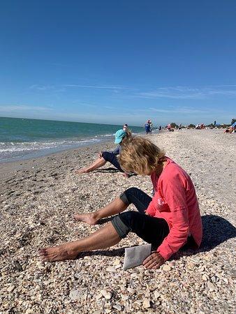 Manasota Key Beach (Englewood) - 2019 All You Need to Know ...