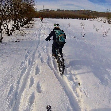 Bike experience in Langhe&Roero after snowfall.