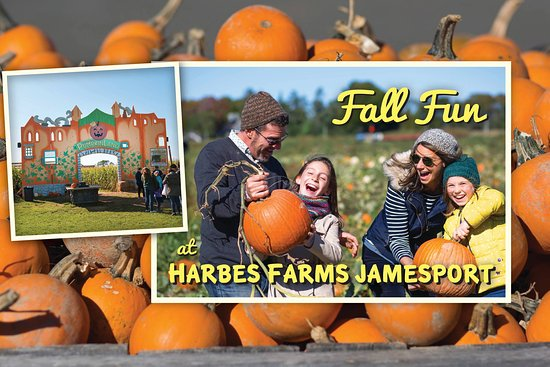 Harbes Farms Jamesport