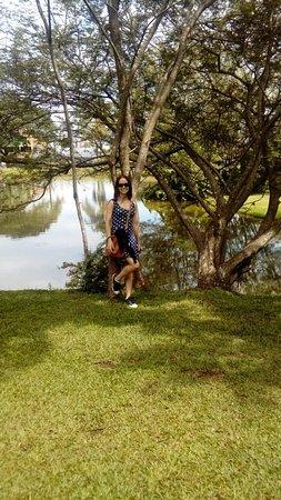 Visto do lago
