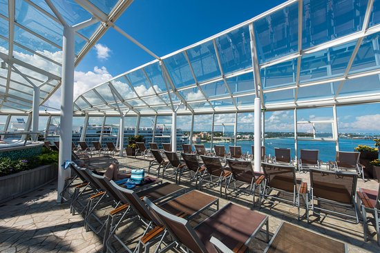 The Solarium on Oasis of the Seas