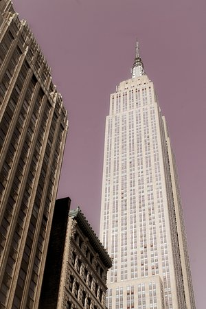 New York Icon Photography Tour: Empire State!