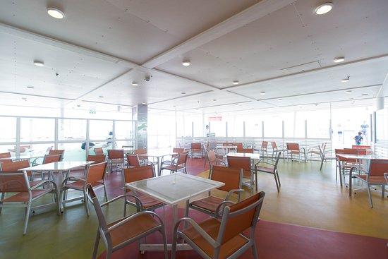Wipeout Cafe on Allure of the Seas