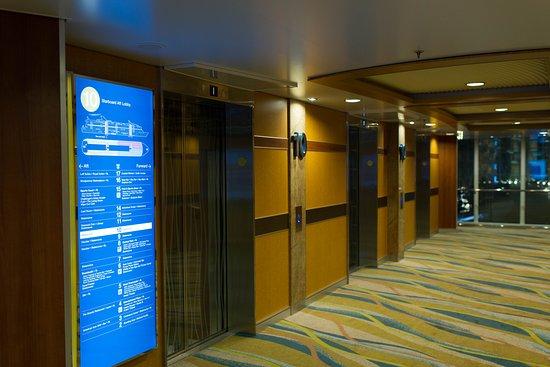 Allure of the Seas: Elevators on Allure of the Seas