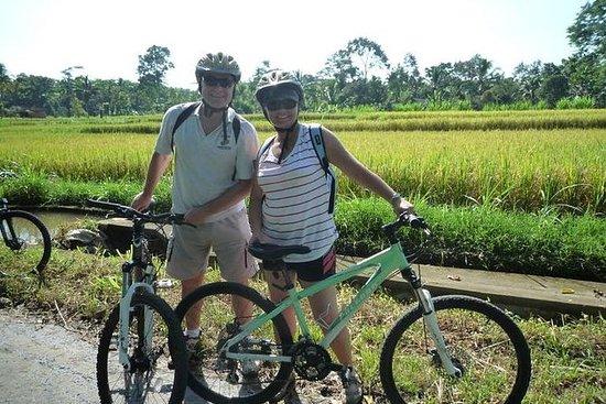 Bali Eco Cycling Tour: Bali Cycling Eco Tour with Buffet Lunch