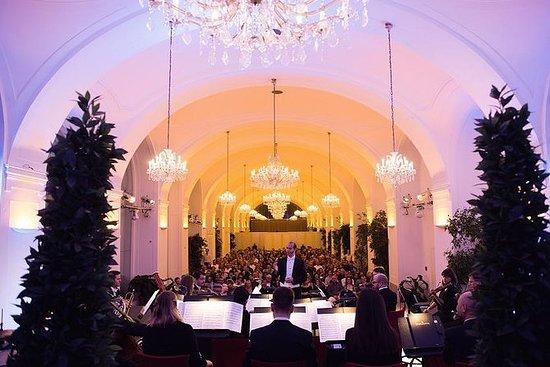 Palazzo di Schönbrunn di sera: tour