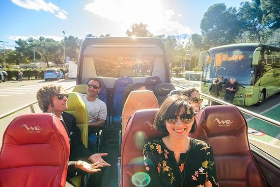 Excursion haut de gamme en minibus en...