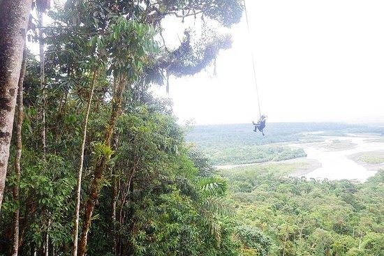 Excursión amazónica en Ecuador...