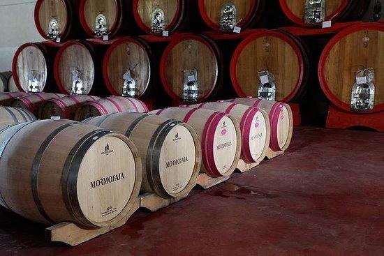 Small Group Tour: Tuscany Wine Tour...