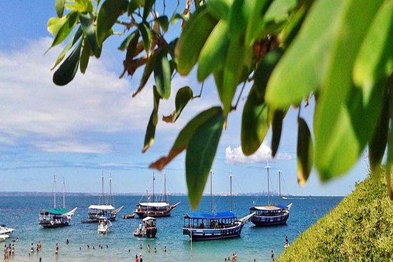 热带Itaparica岛屿之旅包括午餐
