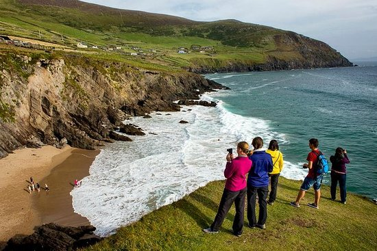 4-dagers South West Ireland Tour fra...