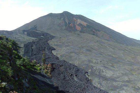 アンティグア島のPacaya火山へのハイキング