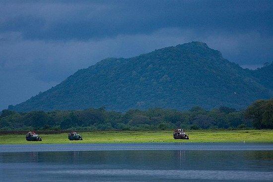 私人旅游:Udawalawe国家公园野生动物园