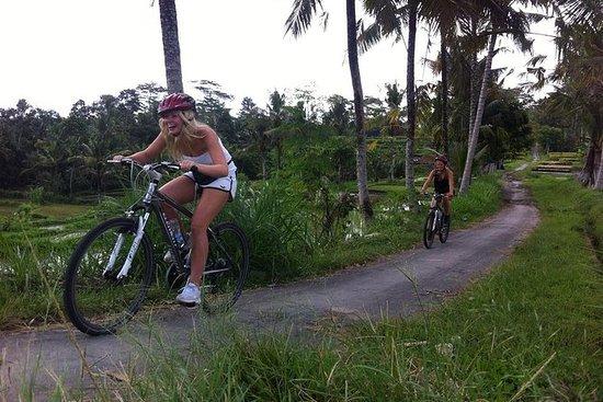バリ島の下り坂をサイクリングで楽しむ秘境ツアー