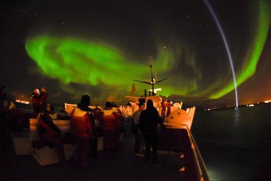 Crucero por la aurora boreal desde el...