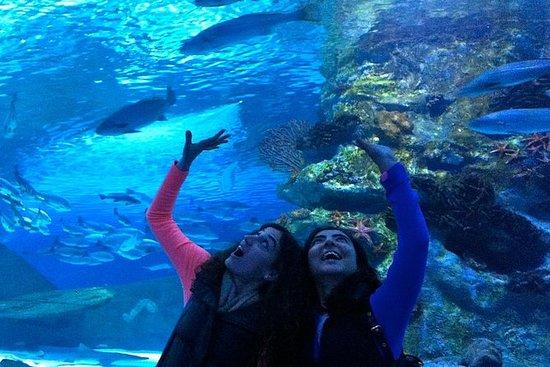 Aquarium d'Antalya avec transfert...