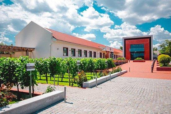 敖德薩全日沙博葡萄酒文化中心私人旅遊
