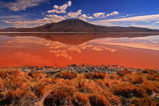 3-dagers Salar de Uyuni og Laguna de...