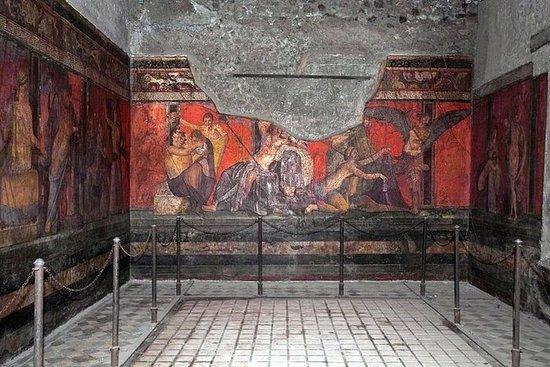 Tour turístico Pompeya y el Monte...