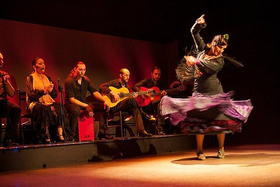 Spectacle de flamenco: Palacio del...