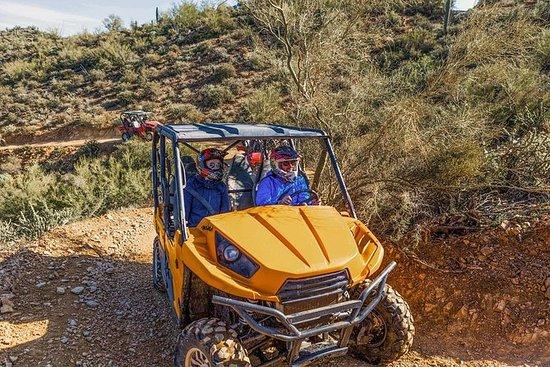3-timers Arizona ørken guidet tur av...