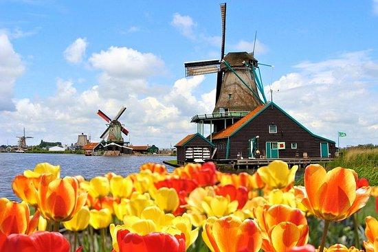 アムステルダム・コンボ:キューケンホフ公園と風車村ザーンセ・スカンス