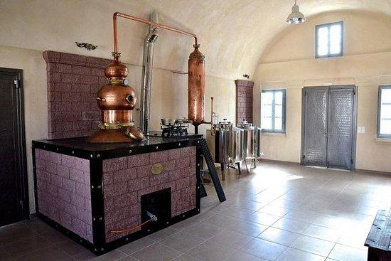 Tour Privado de Degustação de Vinhos de...