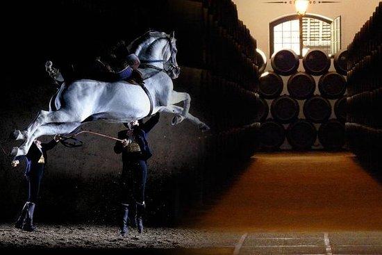 Jerez Historisk guidet tur med...