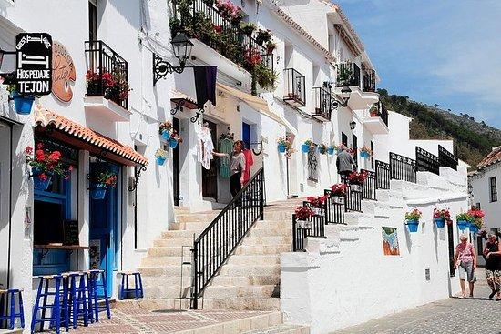 Excursión por la costa de Málaga...