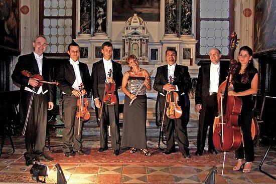 Collegium Ducale Orchestral Concert...