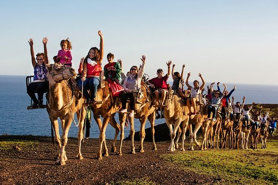 Oasis Park Fuerteventura...