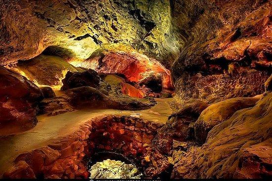 Buss pluss inngang til Cueva de Los...