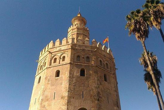 Visita a pie privada en Sevilla con...